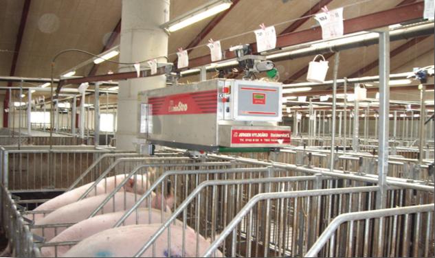 Beschäftigungsmaterial für Schweine